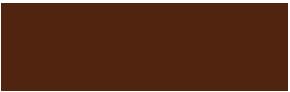 Leomatic Bologna Logo